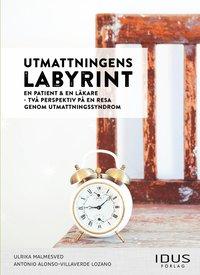 Tortedellemiebrame.it Utmattningens labyrint : en patient & en läkare - två perspektiv på en resa Image