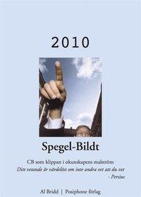 Skopia.it Spegel-Bildt, 2010. CB som klippan i okunskapens malström. Image