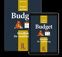 Radiodeltauno.it Budget Image