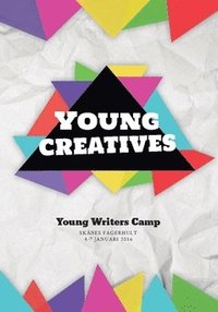 Radiodeltauno.it Young Writers Camp 2016. Skånes Fagerhult 4-7 januari 2016 Image