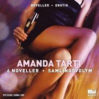 Skopia.it Amanda Tartt 6 noveller samlingsvolym Image