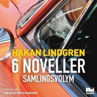 Skopia.it 6 noveller : samlingsvolym Image