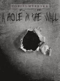 A hole in the wall (e-bok)