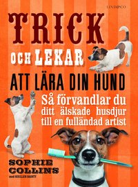 Rsfoodservice.se Trick och lekar att lära din hund : så förvandlar du ditt älskade husdjur.. Image