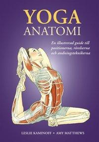 Skopia.it Yoga: anatomi Image