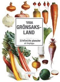 Radiodeltauno.it Mitt grönsaksland: 35 botaniska planscher att färglägga Image