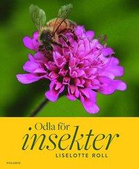 odla-for-insekter