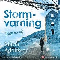 Stormvarning (ljudbok)