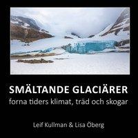 Radiodeltauno.it Smältande glaciärer: forna tiders klimat, träd och skogar Image