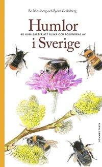 Skopia.it Humlor i Sverige : 40 arter att älska och förundras över Image