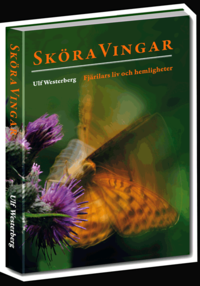 Skopia.it Sköra vingar Image