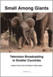 Radiodeltauno.it Small among giants : television broadcasting in smaller countries Image