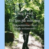 Radiodeltauno.it Ett ljus på min stig : helgmålsböner med Gamla Testamentet Image