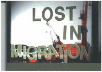 Lost in migration (häftad)