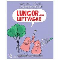 Lungor och luftvägar