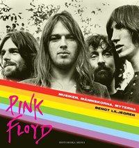 Radiodeltauno.it Pink Floyd Image