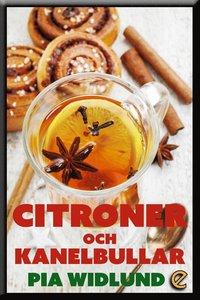 Radiodeltauno.it Citroner och kanelbullar Image