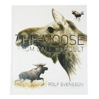 The moose : from calf to adult (inbunden)
