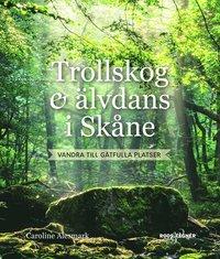 Skopia.it Trollskog & älvdans i Skåne : Vandra till gåtfulla platser Image