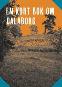 Radiodeltauno.it En kort bok om Dalaborg Image
