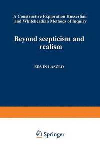 Beyond Scepticism and Realism (häftad)