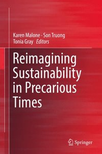 Reimagining Sustainability in Precarious Times (e-bok)