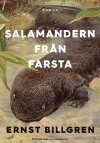 Radiodeltauno.it Salamandern från Farsta - SIGNERAD AV ERNST BILLGREN Image