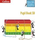 Pupil Book 5B