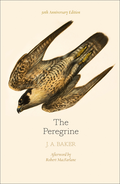 Peregrine: 50th Anniversary Edition: Afterword by Robert Macfarlane