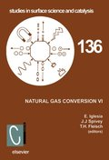 Natural Gas Conversion VI