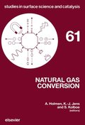 Natural Gas Conversion
