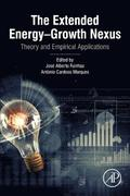 The Extended Energy-Growth Nexus