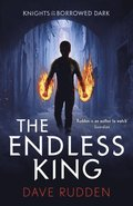Endless King (Knights of the Borrowed Dark Book 3)