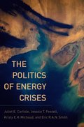 Politics of Energy Crises