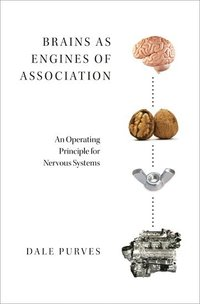 Brains as Engines of Association