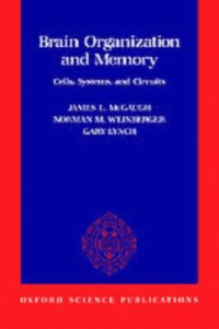 Brain Organization and Memory