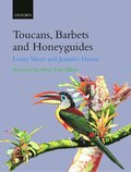 Toucans, Barbets, and Honeyguides