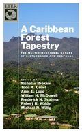 Caribbean Forest Tapestry