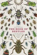 The Book of Beetles: A Life-Size Guide to Six Hundred of Nature's Gems