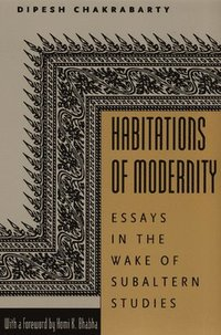 Habitations of Modernity