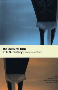 The Cultural Turn in U.S. History