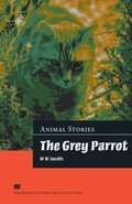 Grey Parrot Advanced