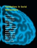 Foundations in Social Neuroscience