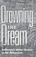 Drowning the Dream