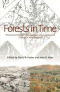 Forests in Time