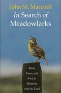 In Search of Meadowlarks