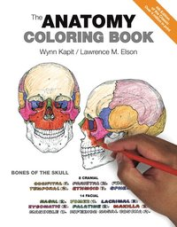 The Anatomy Coloring Book Haftad