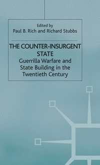 The Counter-Insurgent State