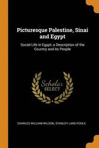 Picturesque Palestine, Sinai and Egypt