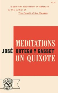 Meditations on Quixote